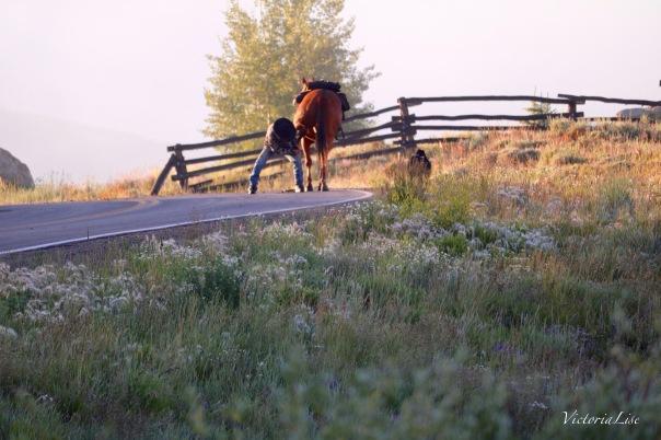 Victoria Lise Ranchers Cleans Horses Hoof