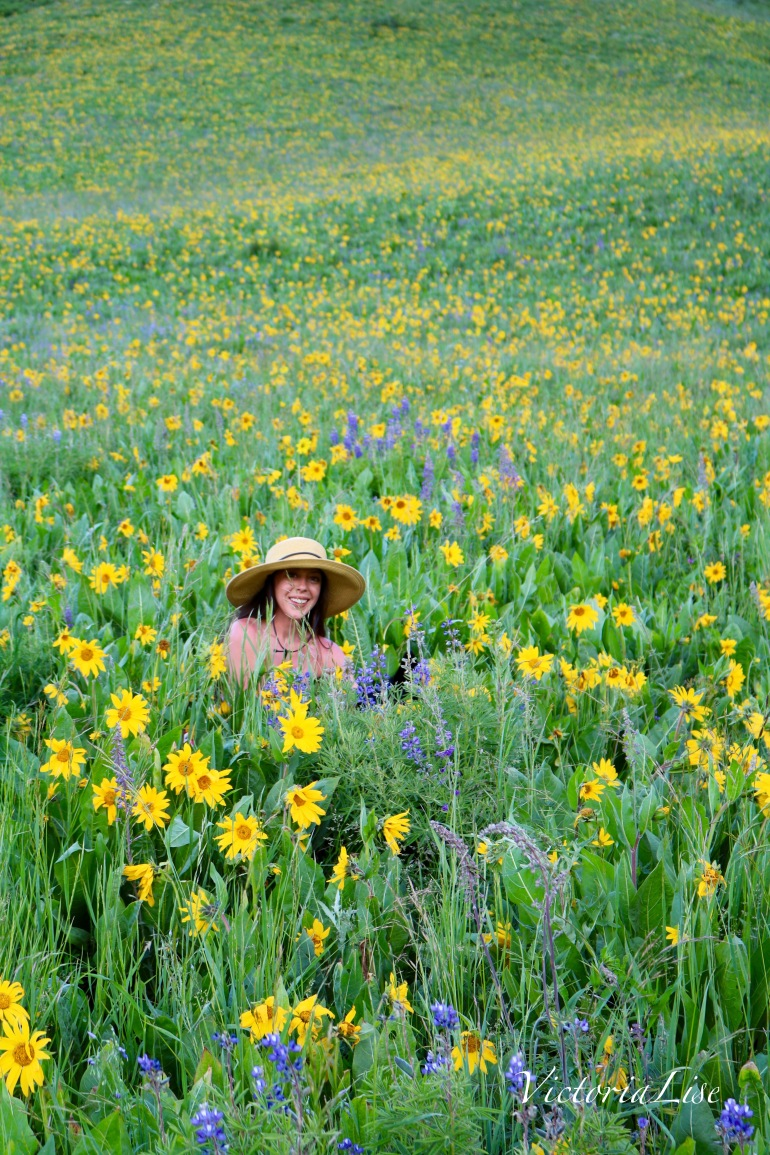 Victoria Lise Sits in Wildflower Field Colorado Color