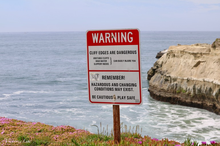 Victoria Lise Photographs Warning Sign
