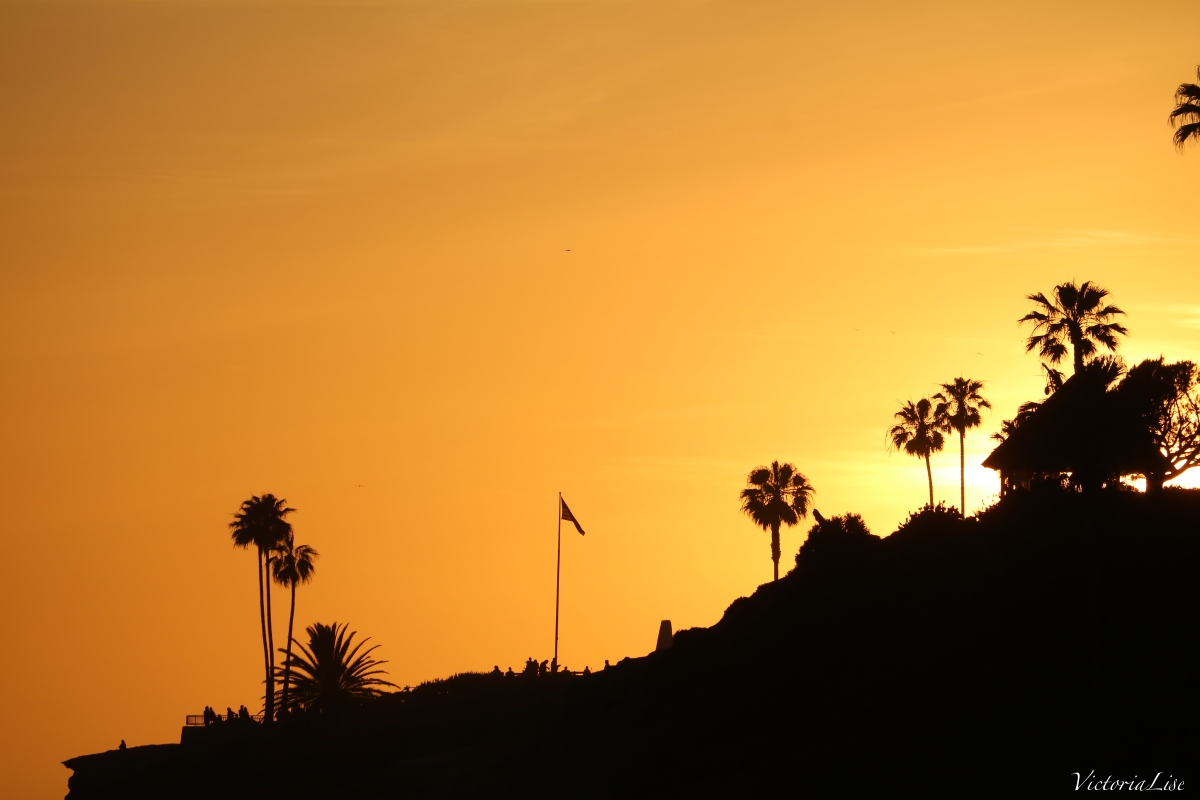 Victoria Lise Laguna Beach Sunset Orange Skies and Palm Trees