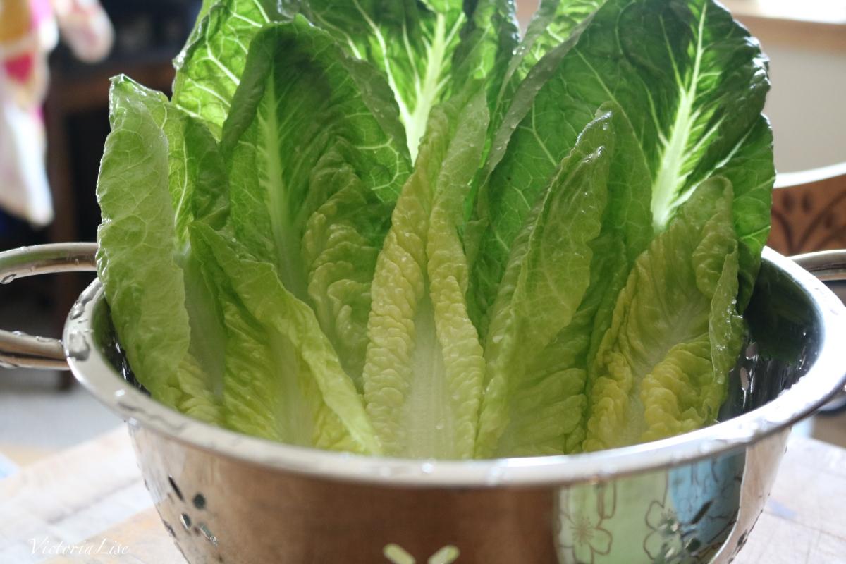 Victoria Lise Veggie Recipe Lettuce Wraps