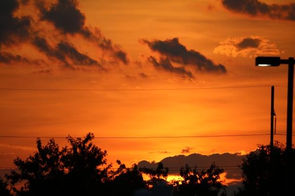 Victoria Lise East Coast Orange Sunset