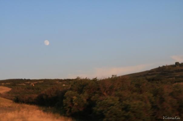 Western Colorado Moonrise Early August