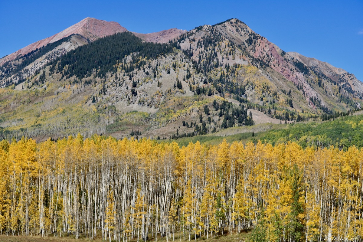 Fall in the high country of Colorado