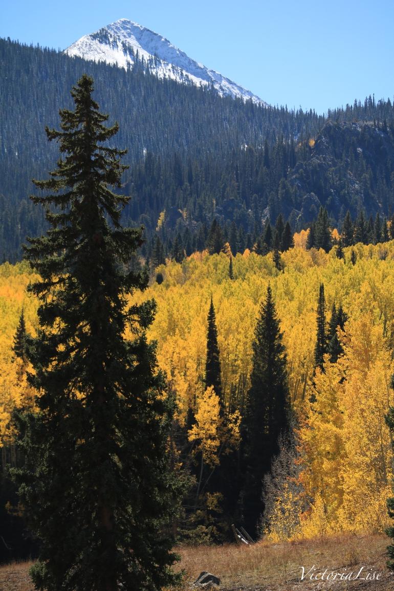 Kebler pass colorful Colorado 2017. Victoria Lise
