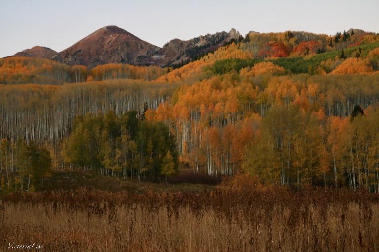 Colorful Colorado at dusk. Autumn 2017 Victoria Lise