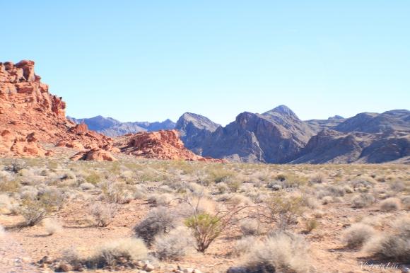 The Mojave Desert Pt.1
