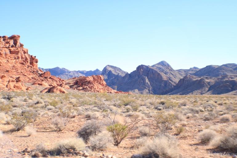 The Nevada Desert. Victoria Lise 2017