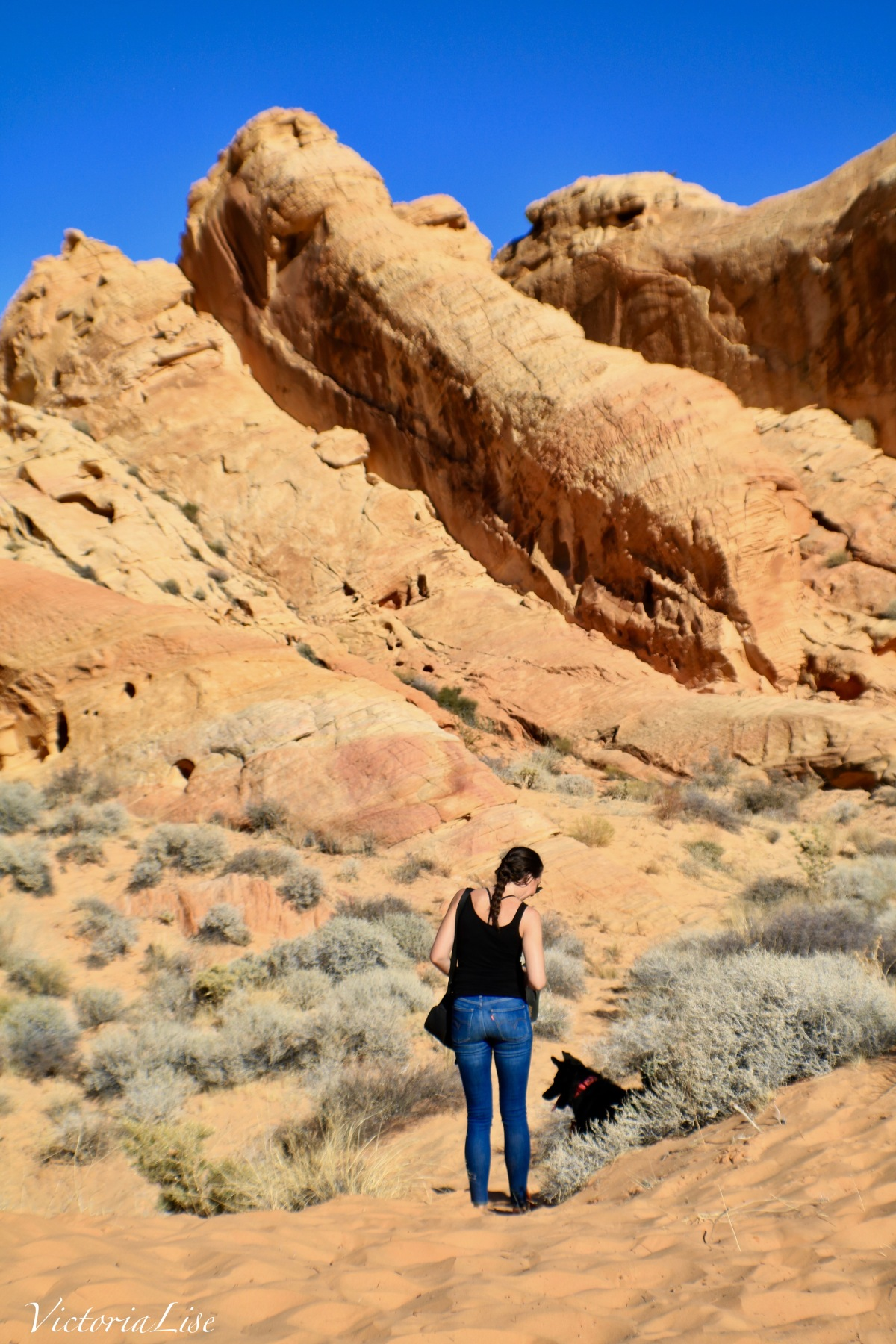 Victoria Lise and dog, Styx. Valley Of Fire.