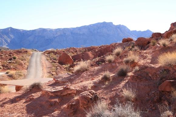 The Mojave Desert Pt.2