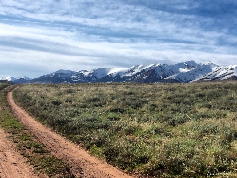 Road Through A Sage Field. ©Victoria Lise