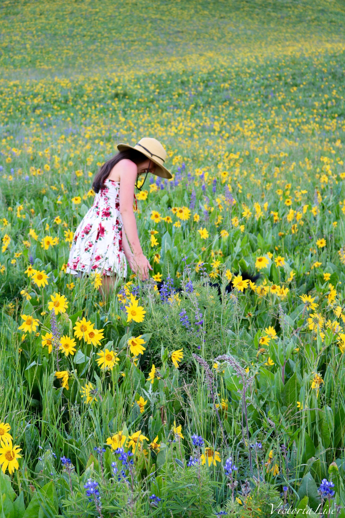 Happiness in a field of Wildflowers.