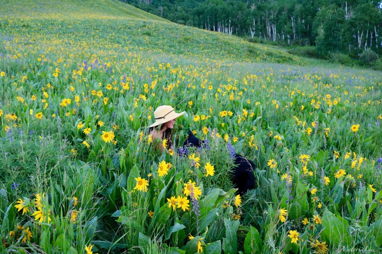 Victoria Lise in a Rocky Mountain Wildflower Field with Styx. 2016.