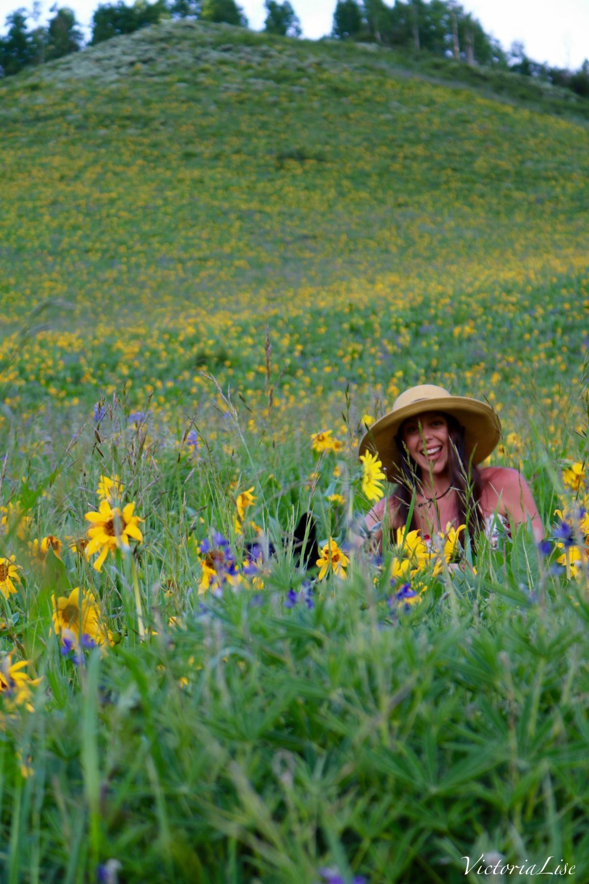 Victoria Lise laughing amongst Colorado wildflowers. Pure Joy.