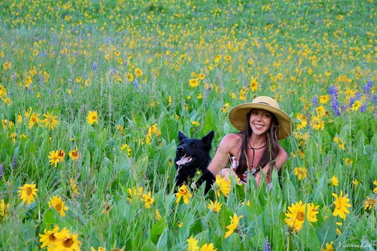 Two Best Friends in a Field Of Dreams. Tori and Styx.