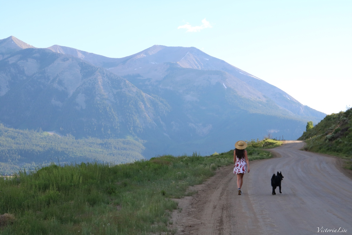 Tori and Styx walk in the mountains. Crested Butte, Colorado.