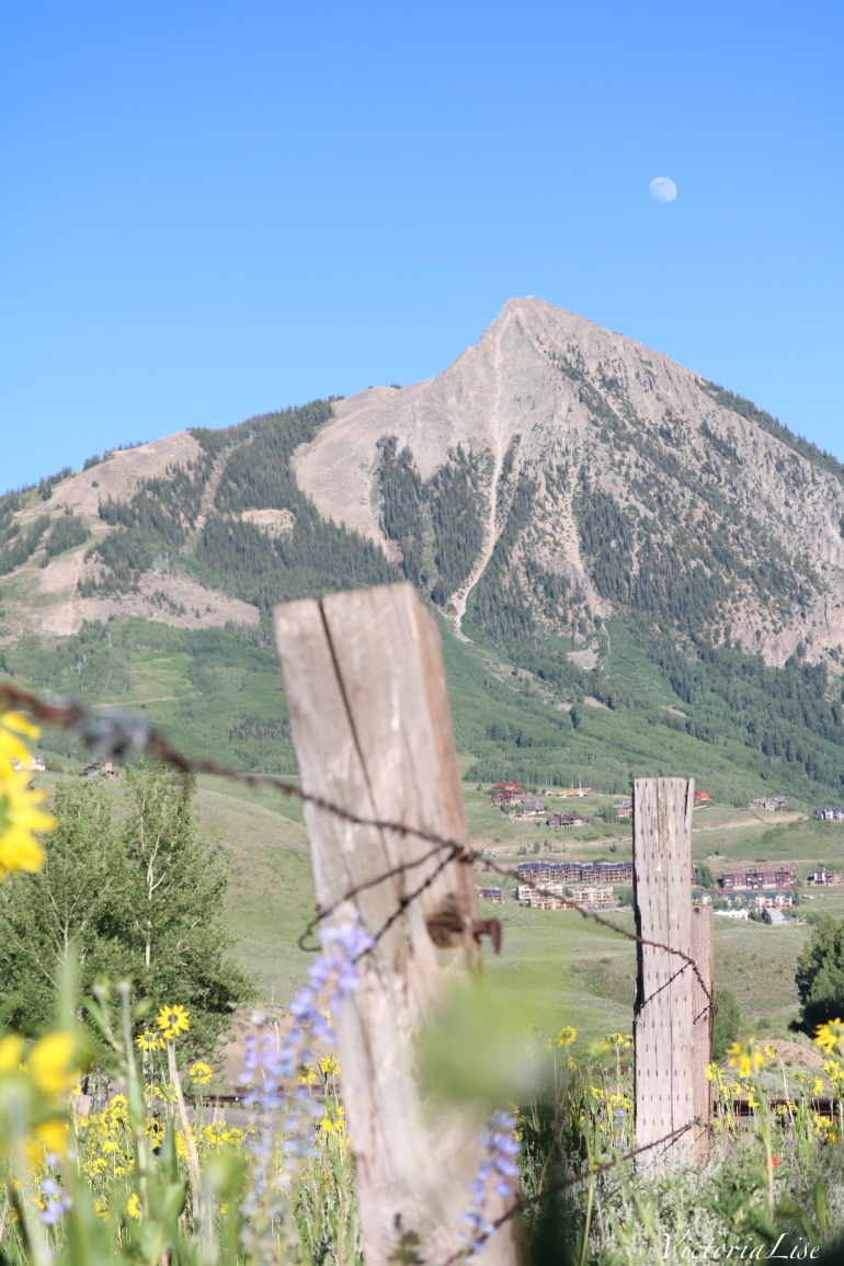 Mt. Crested Butte, wildflowers, and the moon mid-summer. ©Victoria Lise 2018.