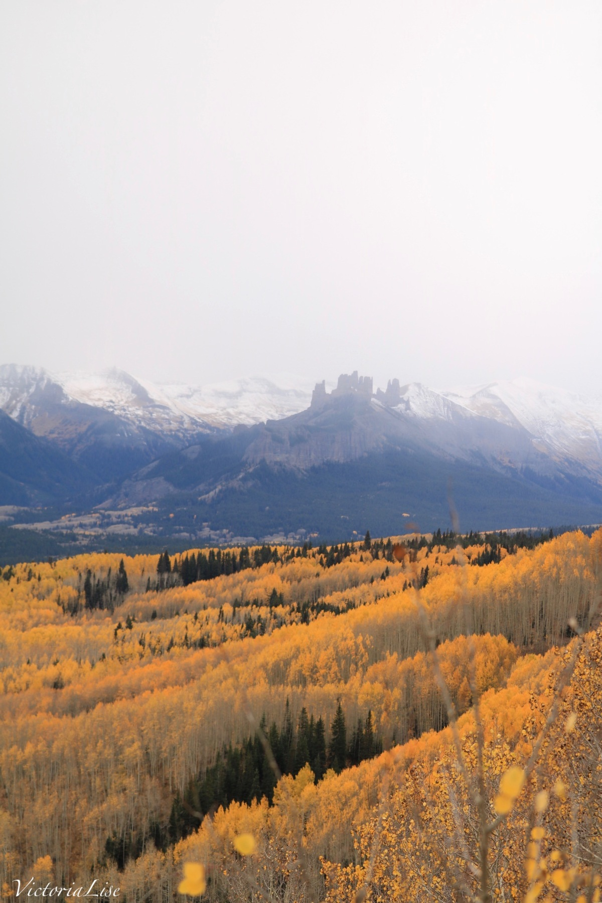 Golden Aspen grove below snowcapped mountains and rock castles. ©Victoria Lise 2018.